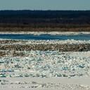 2012 год. ледоход, вид на старую Игарку с первого микрорайона