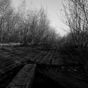 2011 год. деревянная дорога в районе стелы и пионерского лагеря